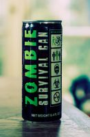 Zombie survival by EliseEnchanted