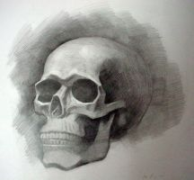 Skull by gizmoaseth