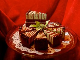 Chocolate Soap by ltripp50