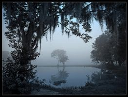 Blue Fog by Geaux
