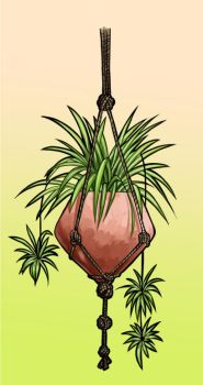 Hanging plant by Moihemmo