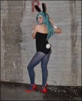 Bulma Bunny Version by palladineve4