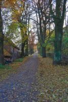 photos d'automne by SweetNovella