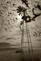 Kate Windmill by gsphoto