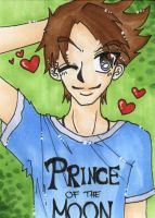 ACEO - Prince Charming by Himmelsblau