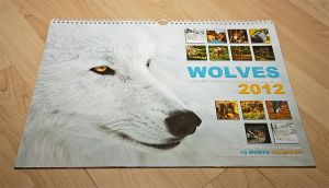 Lupinity Wolf Calendar 2012 by Lupinicious