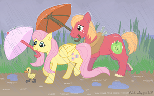 Weather for Ducks by bibliodragon