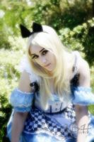 Alice In Wonderland 4 by mashashy