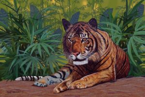 Bengal Tiger by RandyAinsworth