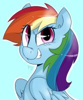 Dashie Portrait by wizardglitter