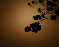 Nature Silhouette Flower Tree by magaxion