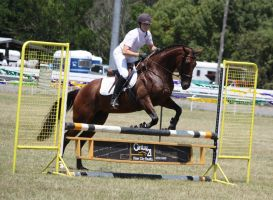 STOCK Showjumping 425 by aussiegal7