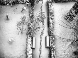 Footsteps in the snow by ale2xan2dra