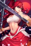 Fairy Tail - Erza Titania Scarlet by lucidsky