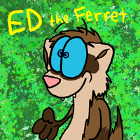 Ed the Ferret by Edorisuke