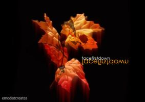 Face First Down - Autumn by emodist