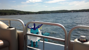 Vaporeon at the Lake by alewism