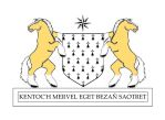 Blason de la Bretagne evolution crin or by antoinepaugam
