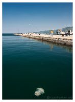 Trieste and the jellyfish by CogitoErgoRum