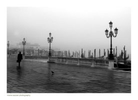 : solitary venice by moiraproject
