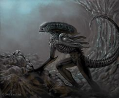 ALIENS- Hell's Gate. by jaxxblackfox