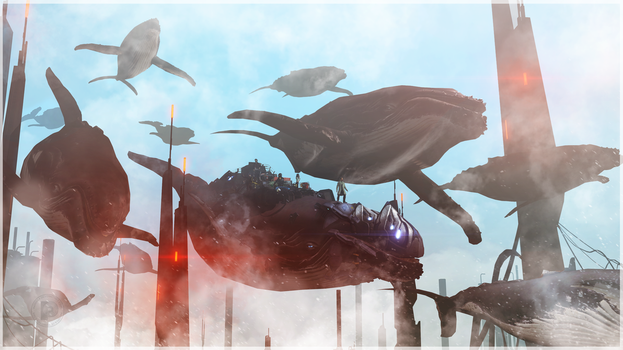 Whales by NOGA14