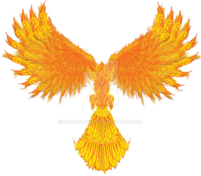 Phoenix Rising by godproject