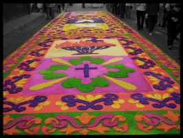Alfombra by blizzy123