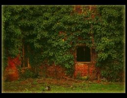 Abandoned 1 by Forestina-Fotos