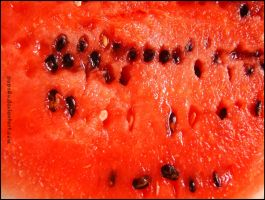 Watermelon by peps4o