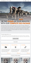 SEO Newsletter by JD-RoX