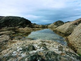 Rockpool by LonelySorceress