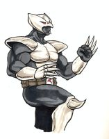 Shadowhawk colors by Bleagh