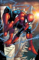 Spider man by CarboneroBen