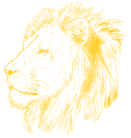 PAINT CHALLENGE_Lion 1 by Ydera