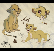 Togo Reference Sheet by Katterson