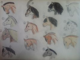 Horse Head Adopts, Draw or Points | 3 Left by NikkiiQ