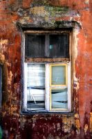 window by samuelvincent