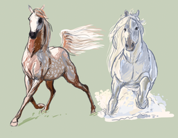 Horse sketches by ExitStageLeft