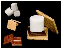 :Smores: by SezzySue