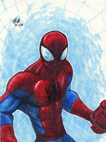 Spiderman Colour 2 by matsuyama-takeshi