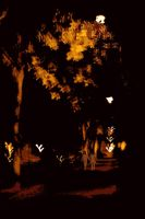 Autumn nights. by jennystokes
