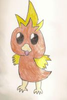 Torchic by SkunkyRainbow270