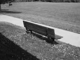 Bench by AiPFilmMaker