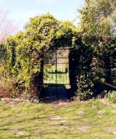 Entrance To The Secret Garden by mirmirs
