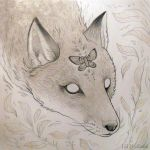 Pale Fox by JillHoffman