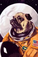 RGD - Astro-Pug by cluis