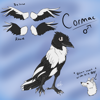 Cormac Ref by AttackOfTheFlash