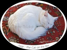 The Cat on the Mat by substar