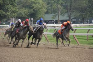 Saratoga Race Track 2011 3 by wolf688
